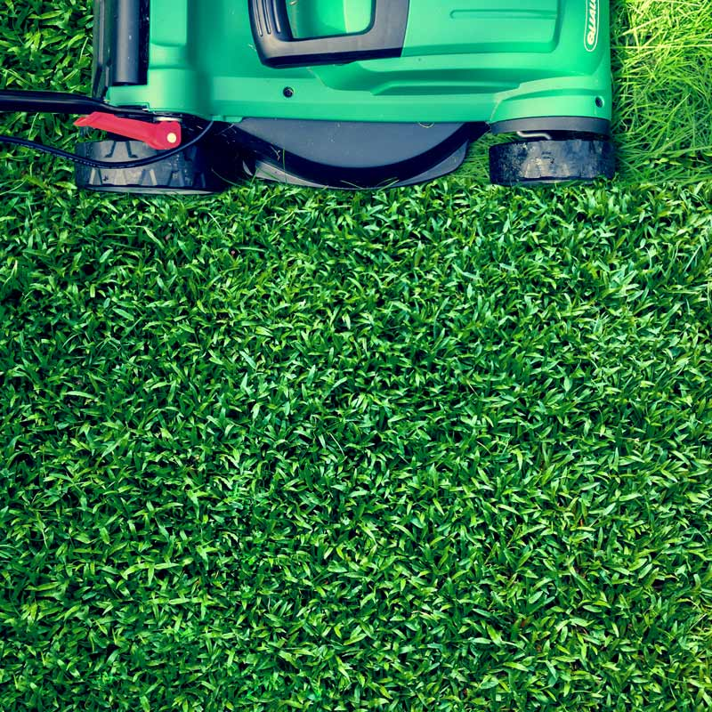 Lawn mower mowing the grass